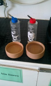 Bottle or Bowl?? that is the question :o